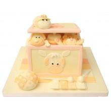 Baby Shower Toy box Birthday Cake