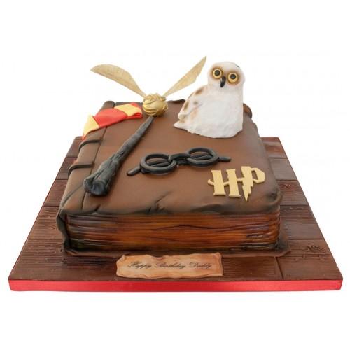 Remarkable Harry Potter Book Birthday Cake Funny Birthday Cards Online Alyptdamsfinfo