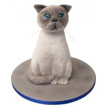 White Cat Birthday Cake