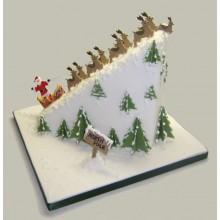 Christmas Santa scene Cake