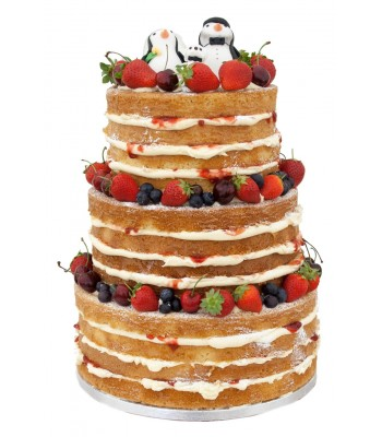 Adult naked cake topper